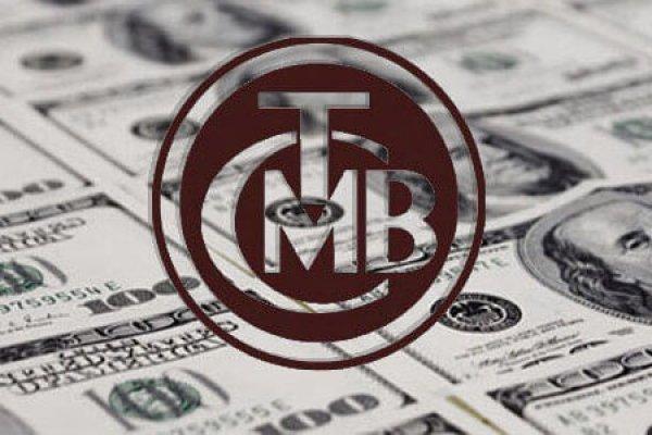 Yüksek döviz borcu olan şirketlere de düzenleme geliyor