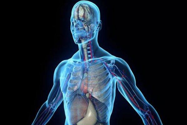 Vücutta dijital olarak takip edilebilen ilaca onay