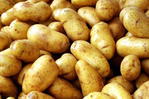 Patates fiyat artışında tüm dünyayı solladık