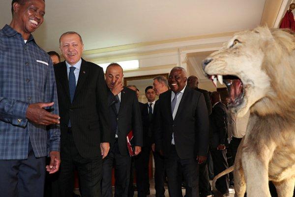 Erdoğan, Zambiya'da