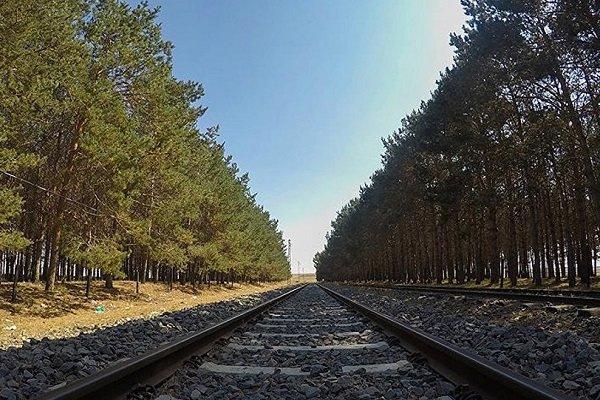Demir yolları taşımacılığı özel şirketlere açılacak