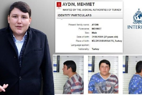 Çiftlik Bank'ın kurucusu Mehmet Aydın, Interpol'un en çok arananlar listesinde