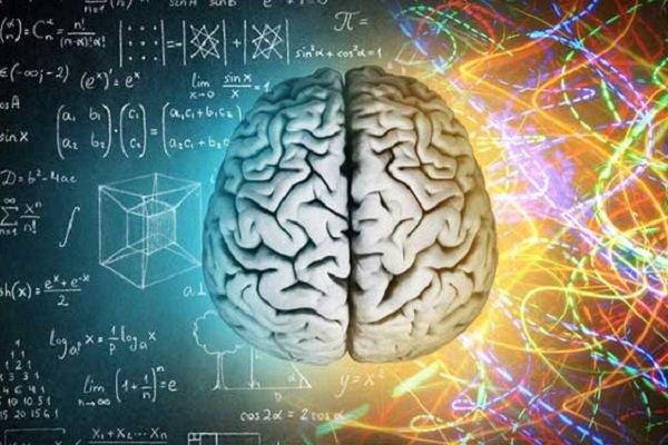 Beyninin yarısı alınanlar normal yaşamı sürdürüyor