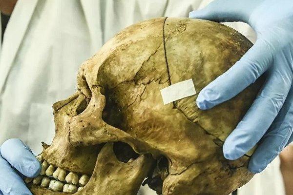 Bilim insanları, kafatasında yeni bir organ buldu