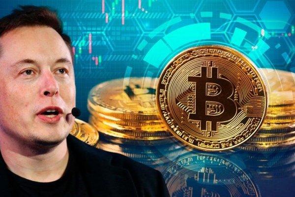 Elon Musk'a güvenenler zararda