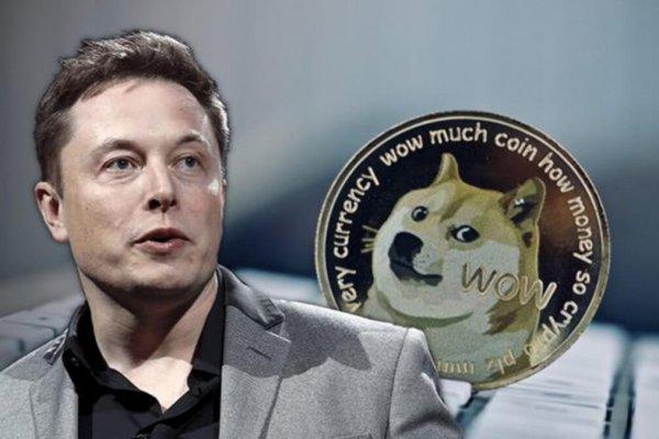 Elon Musk'tan Tesla için sürpriz Dogecoin anketi