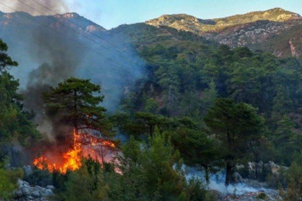 Yangının hasar bilançosu açıklandı