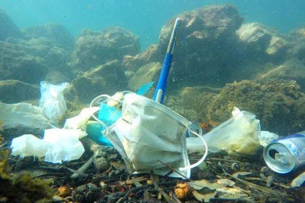 Okyanuslar maske çöplüğüne döndü
