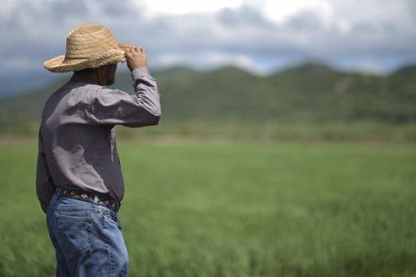 ABD'de tarım dışı istihdam beklentiyi karşılamadı