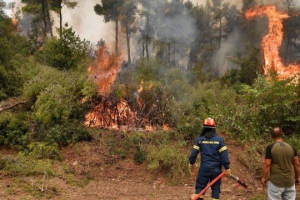 Yangınlar nedeniyle karbondioksit emisyonlarında rekor