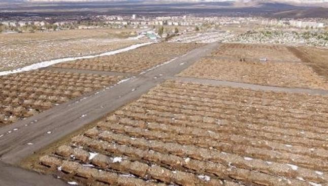 Erzurum'da 1800 mezar kazıldı