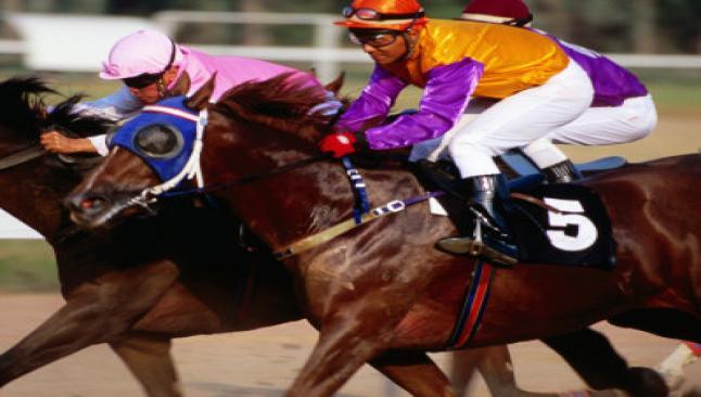 Atlar artık özel sektör için koşacak
