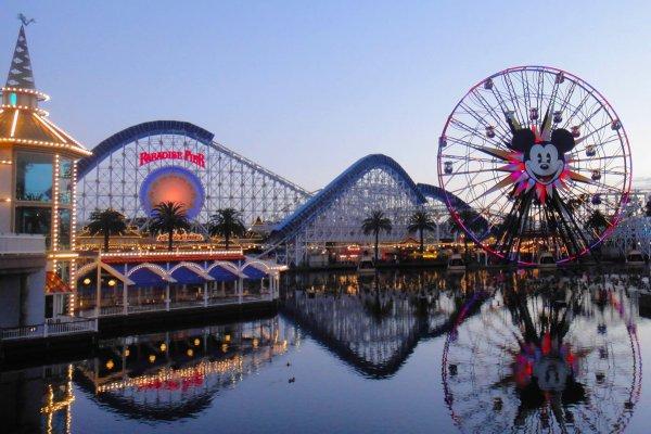 Bazı bürokratlar Disneyland'a hiç gidemeyebilir