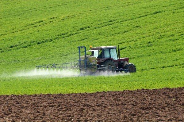 Ekilemeyen tarım arazileri kiralanacak