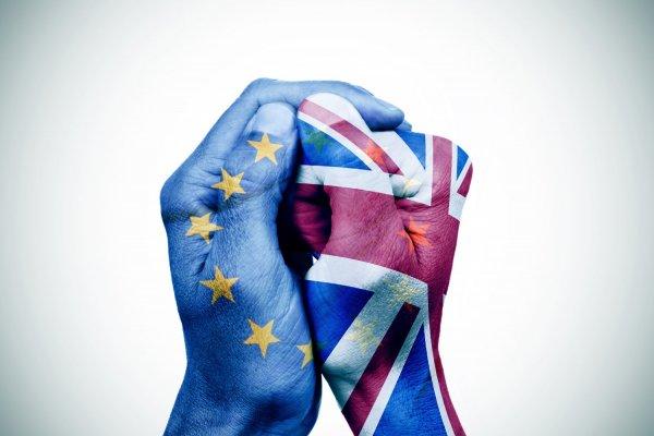 Brexit anketlerinde son durum