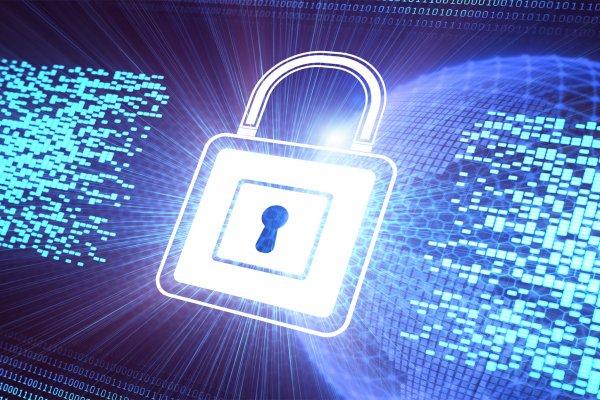 Hassas kurumlara siber koruma