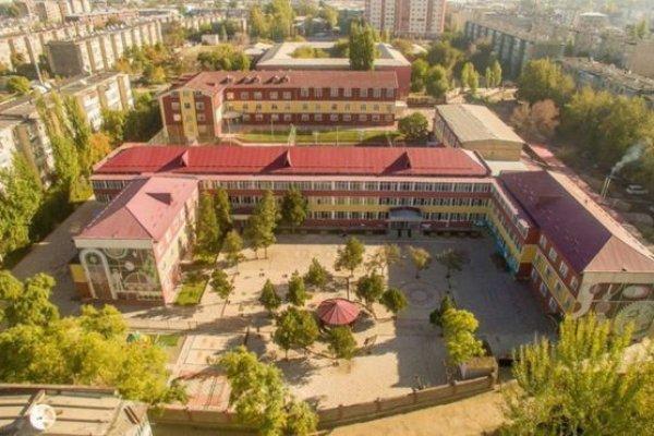 Bazı ülkeler Gülen'in okullarını neden kapatmıyor