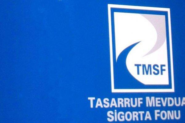 255 şirket TMSF'nin yönetimine geçti