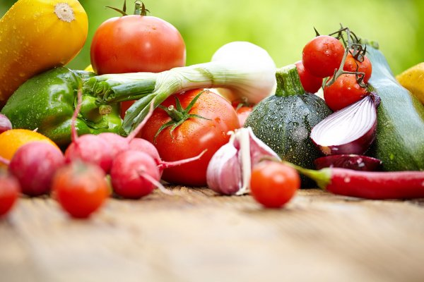 Gıdanın yüzde 17'si dokunulmadan çöpe gidiyor