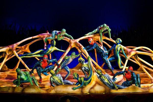 Cirque Du Soleil'in malzemelerine Türkiye'de tedbir kondu