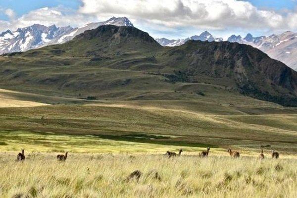 North Face'in sahibi Şili'ye 1 milyon dönüm arazi bağışladı
