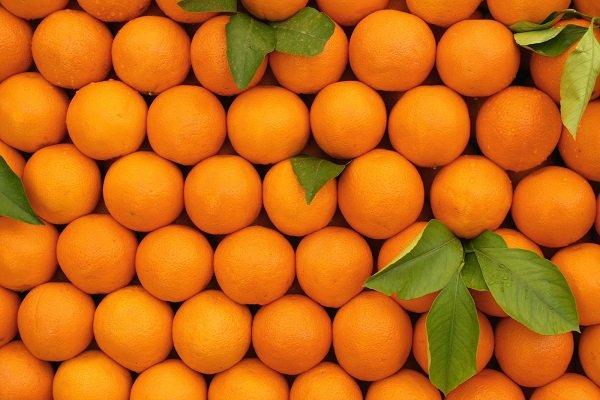 Rusya, portakala da ek vergi koymaya hazırlanıyor