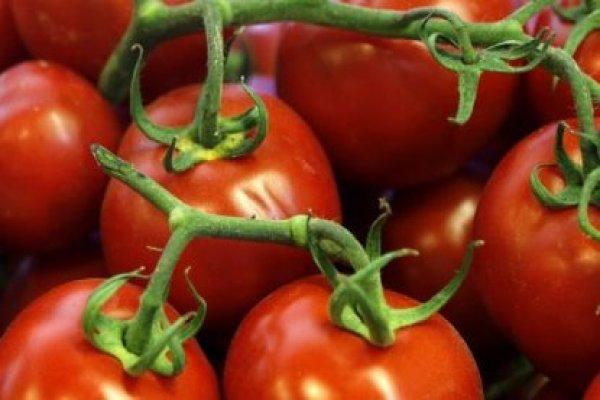 Irak Türkiye'den domates ithalatını durduruyor!