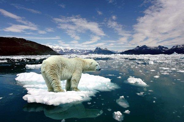 G20'nin gündeminde iklim değişikliği var