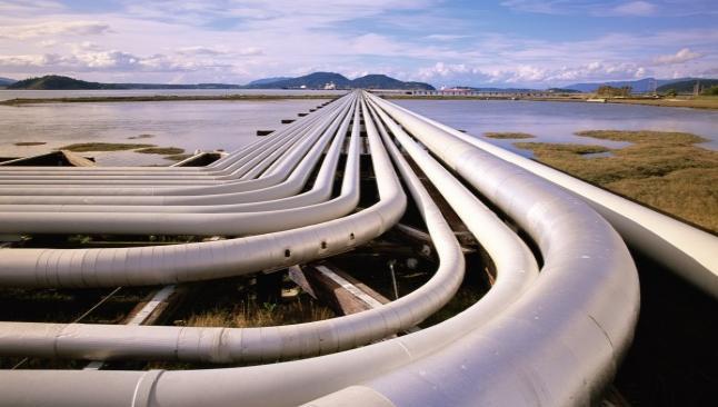Bulgaristan'da doğalgaz paniği