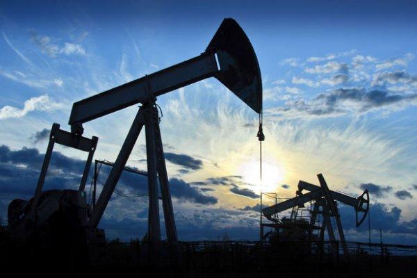Brent petrolün varili 49 dolar seviyesinde