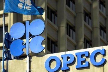 OPEC'in petrol üretimi 10 yılın en düşüğünde