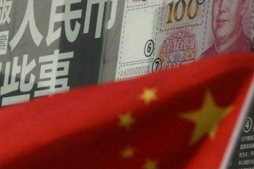 """""""Yuan, rezerv para birimi olabilir"""""""