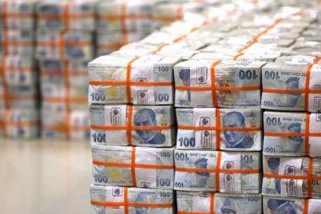 Merkezi yönetim brüt borç stoku 867,4 milyar lira