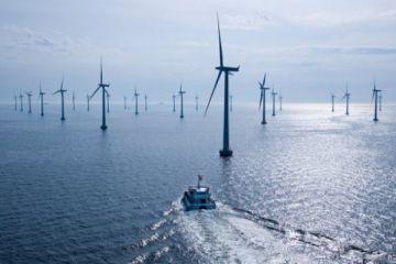 Türkiye'nin ilk deniz üstü rüzgar santrali ihalesi ekimde