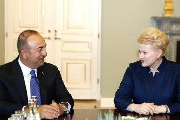 Litvanya: Avrupa, Türkiye'ye sırtını dönemez