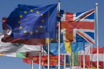 """Avrupa Birliği'nden """"operasyonu durdurun"""" çağrısı"""