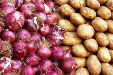 Kuru soğan ve taze patatesin ihracatı izne tabi
