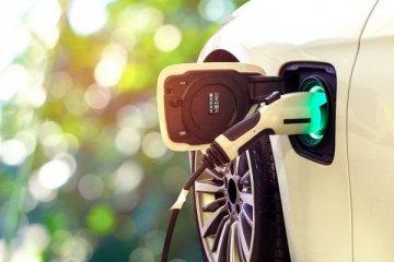 Borusan elektrikli araç ithalatı için yeşil kredi aldı
