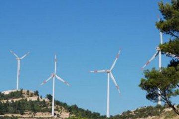 Galata Wind, halka arz başvurusunu yaptı