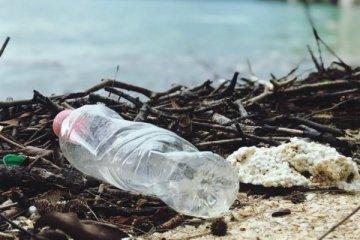 """BM'den """"denizlerimiz plastik atıklarla boğuluyor"""" uyarısı"""