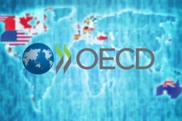 OECD: G20 ülkelerinde büyüme yavaşladı