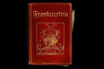 Frankenstein romanının ilk kopyasına rekor fiyat