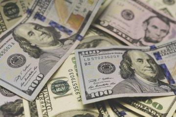 ABD'ye para gönderen 417 kişi hakkında gözaltı kararı