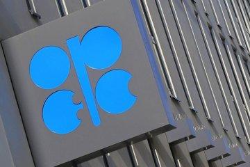 OPEC+ toplantısı başladı