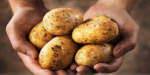 70 bin ton patatesi kim stokladı