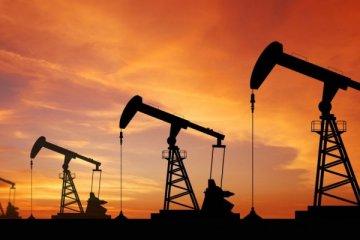Petrol fiyatları uzun süre düşük kalabilir