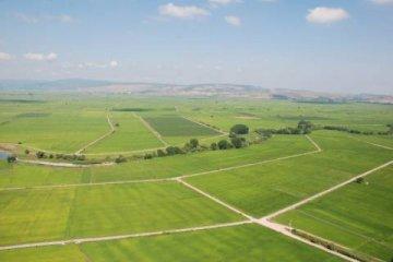 Tarım ihracatı yüzde 10 arttı