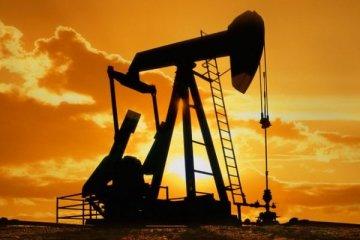 Brent petrolün varili 54,81 dolar