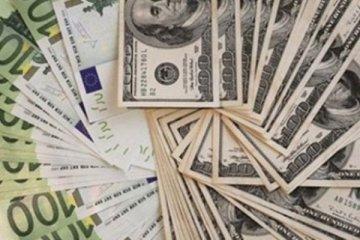 Yabancı para varlıkları 2020'de yüzde 5 arttı