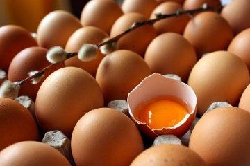 Yumurta fiyatları yükseliyor, üretici isyan eediyor